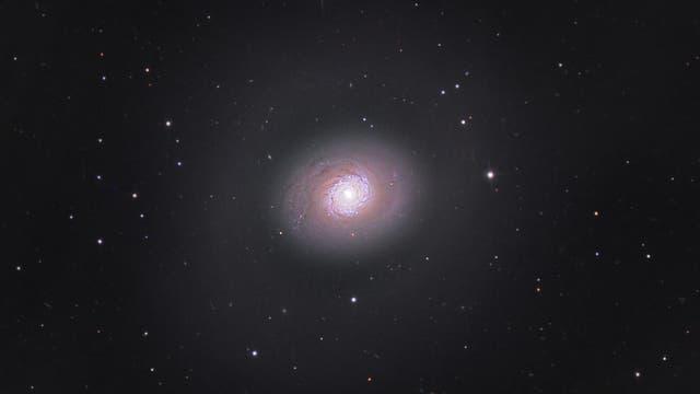 M 94 - Starburst-Galaxie