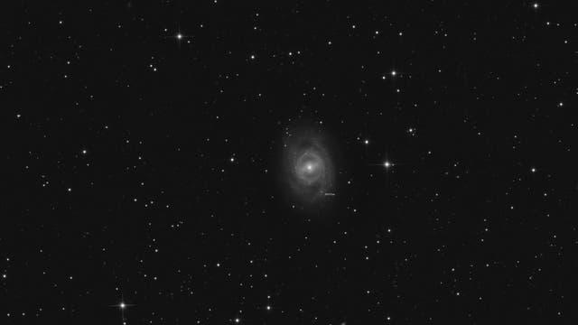 M 95 mit Supernova 2012aw