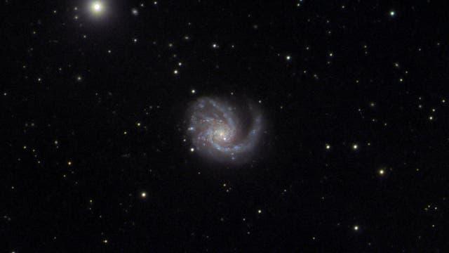 SN 2014L in M 99