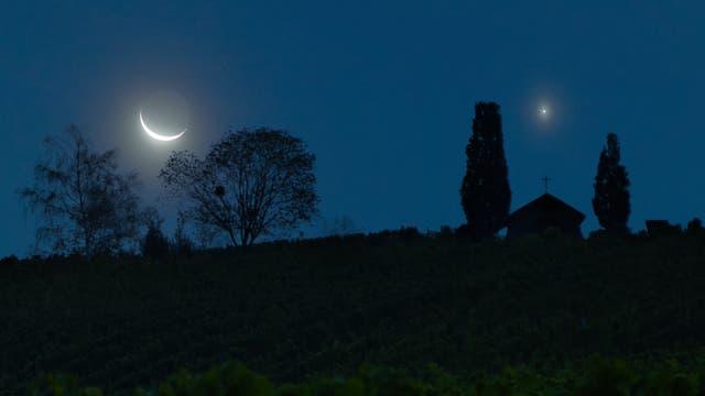Mond und Venus über dem Weinberg