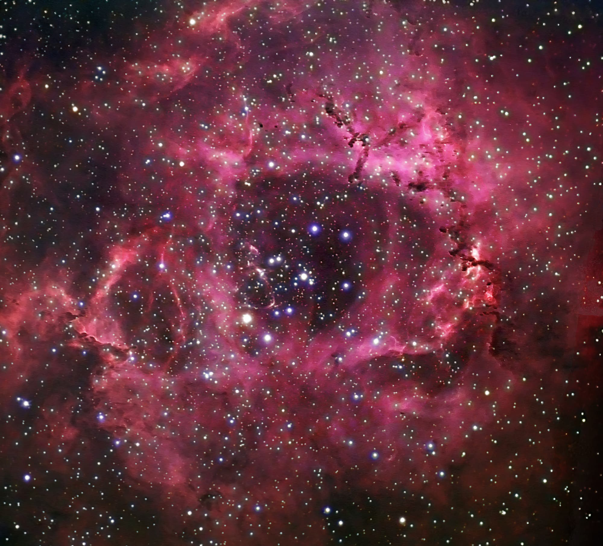 NGC 2244 und Rosettennebel