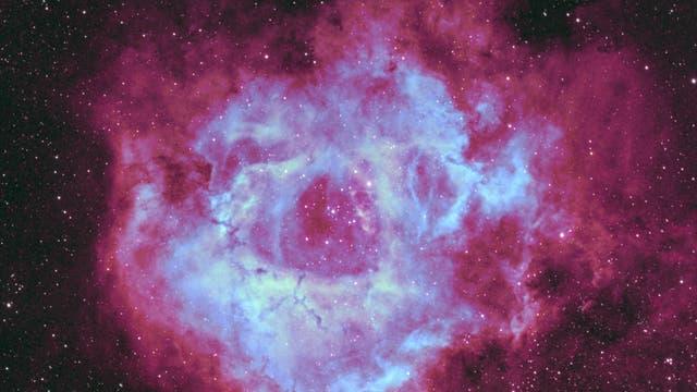 NGC 2244 Rosettennebel in Fancy Color