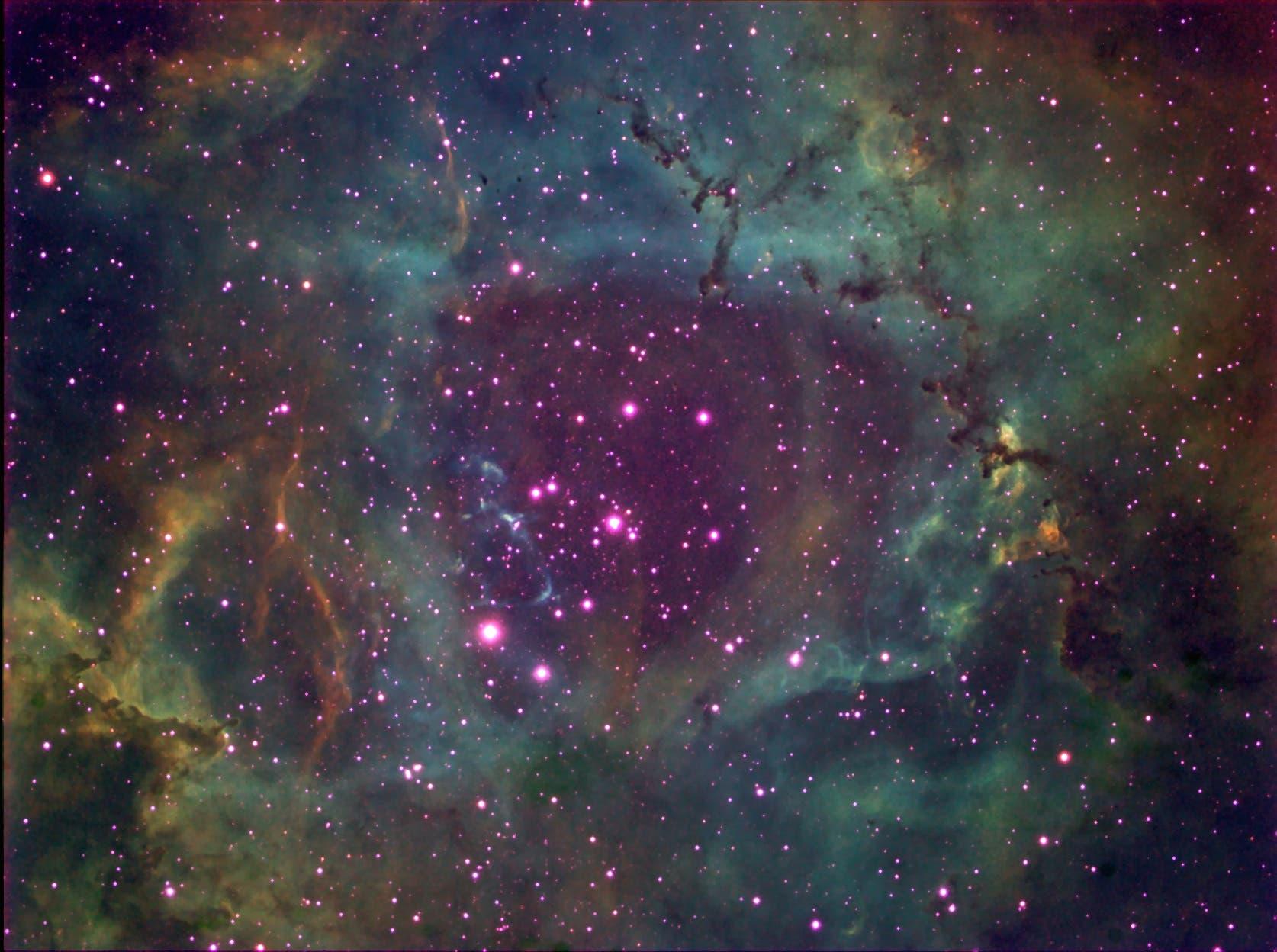 Rosettennebel NGC 2244