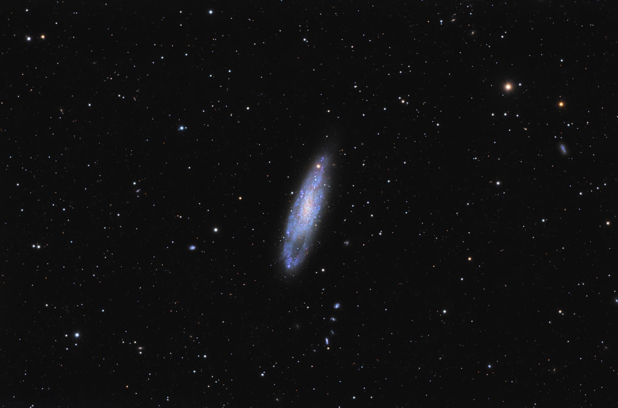 Spiralgalaxie NGC 247