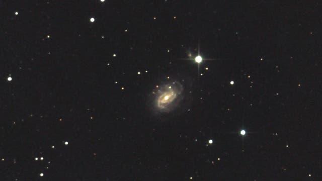 NGC 1187 - eine Balkenspirale im Eridanus (1)