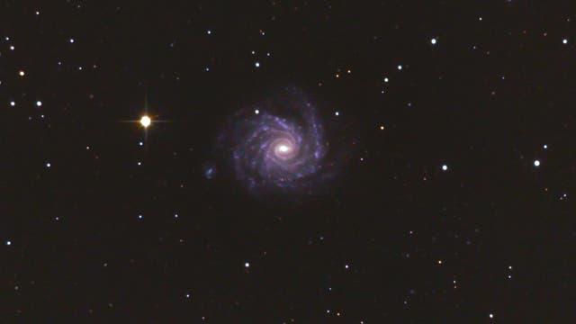 "NGC 1232 - ""Grand Design Spirale"" im Eridanus (Arp 41)"