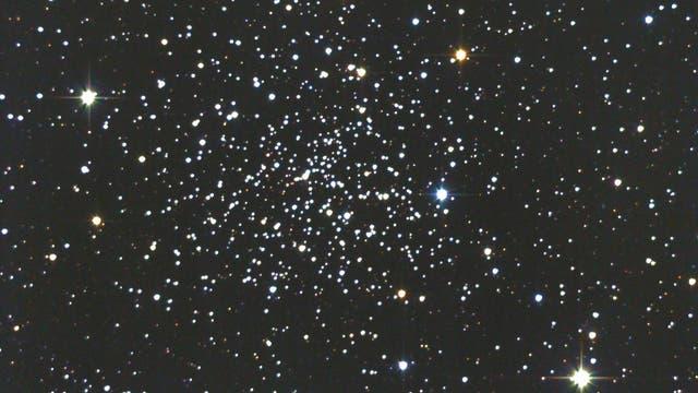 NGC188 im Kepheus, der älteste offene Sternhaufen!
