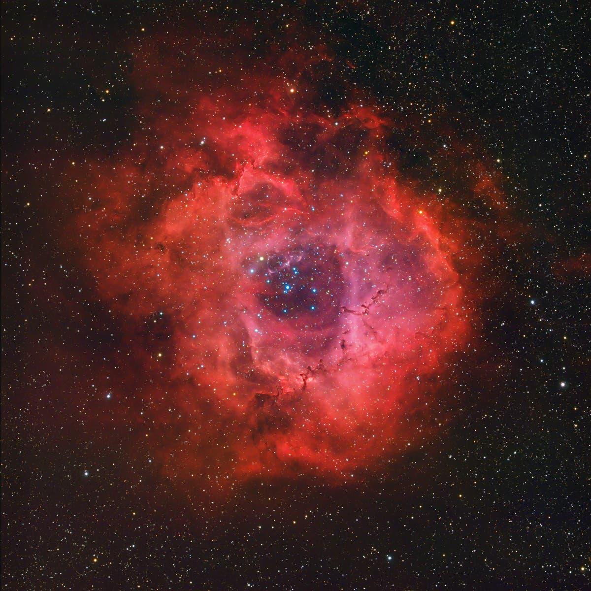 NGC 2237 / NGC 2244 -  Rosettennebel