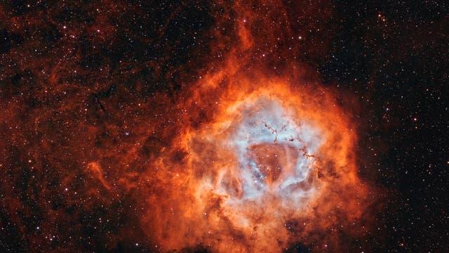 NGC 2237 / 2244 Rosettennebel