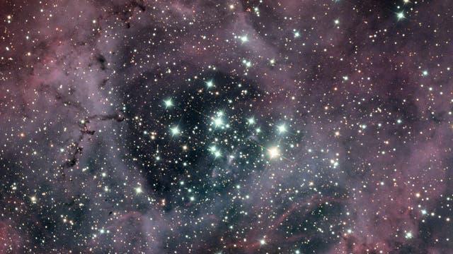 Der offene Sternhaufen NGC 2244 eingebettet in den Rosettennebel NGC 2237, 2238, 2239, 2246