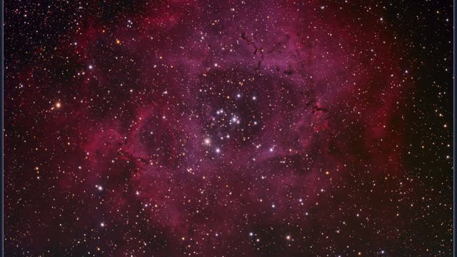 NGC 2244 - Rosettennebel