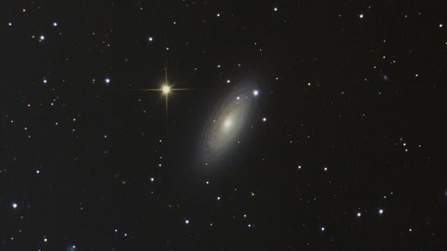 NGC 2841 in Ursa Major