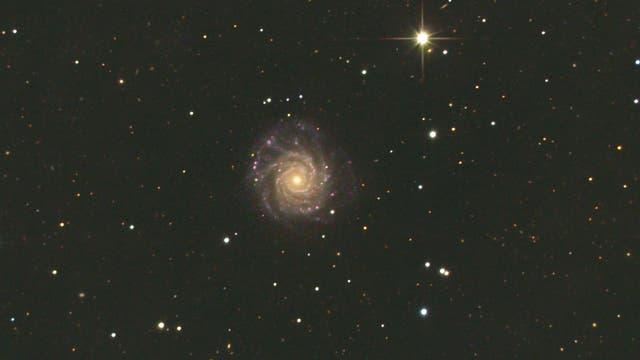 NGC3938 in Ursa Maior