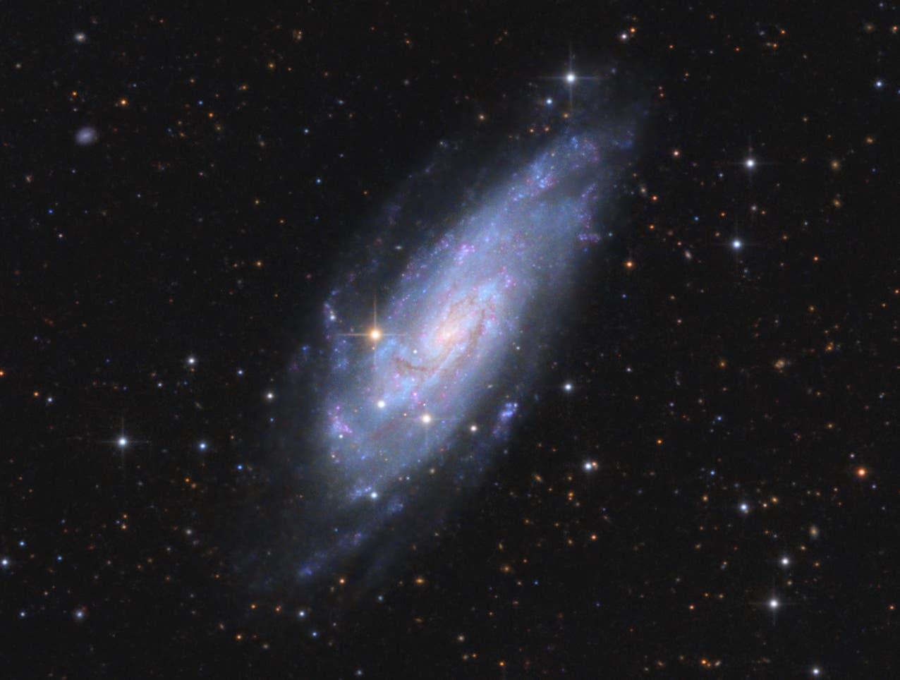 NGC 4559