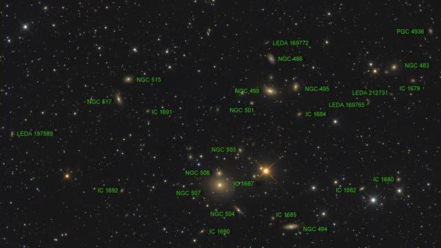 Arp 229 (NGC 507/508) Objekte