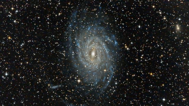 NGC6744 - Pavo-Galaxie