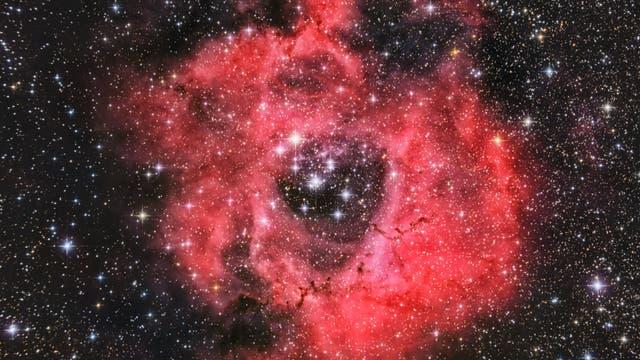 NGC 2237 - Rosettennebel