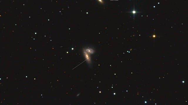 Supernova  in NGC 4568