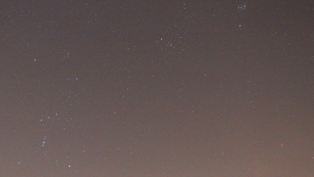 Stier und Orion