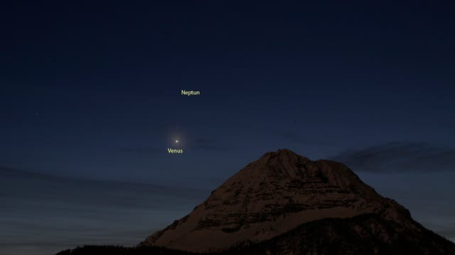 Venus und Neptun