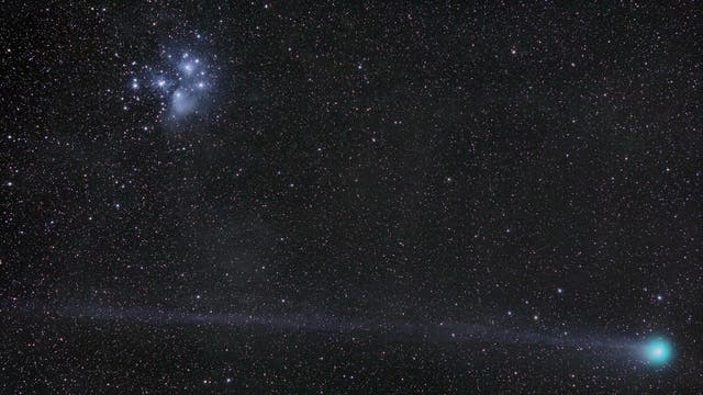 Komet C/2014 Q2 Lovejoy besucht die Plejaden