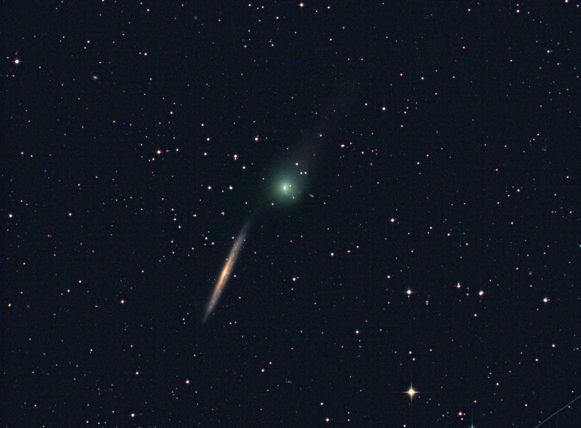 Komet C/2014 Q2 Lovejoy begegnet NGC 5907