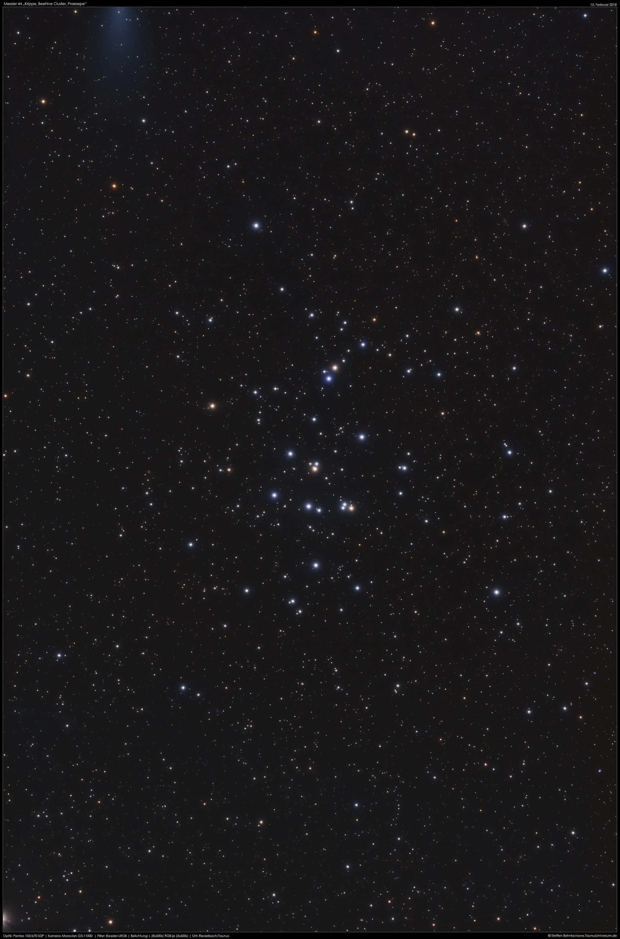 """Messier 44, """"Die Krippe"""""""