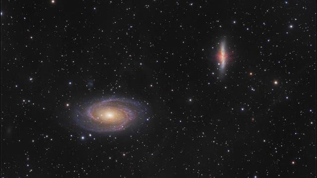 Bodes Galaxie M 81 und M 82