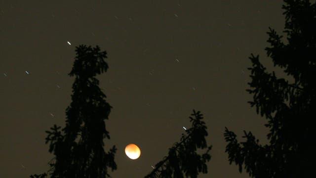 Mondfinsternis hinter Bäumen