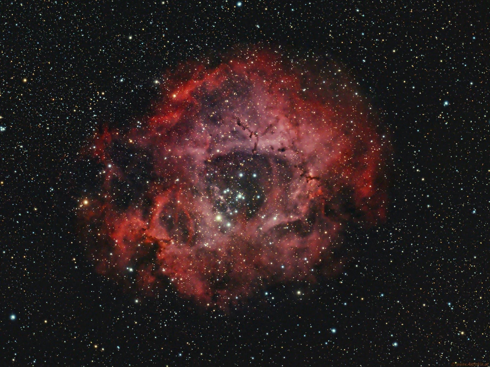 NGC2246 Rosettennebel