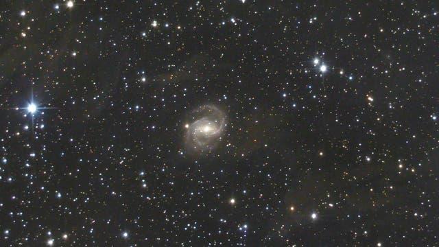NGC 6951  Seyfert 2 Galaxie im Kepheus (1)