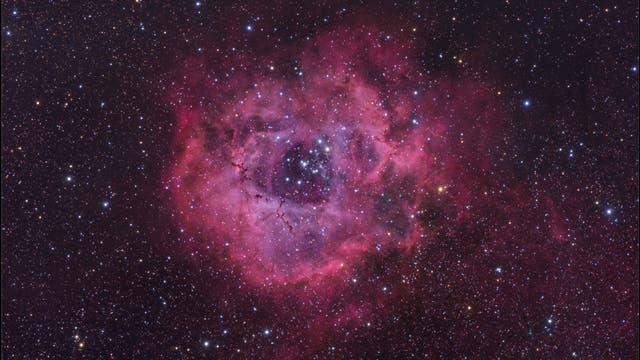 Der Rosettennebel und NGC 2244