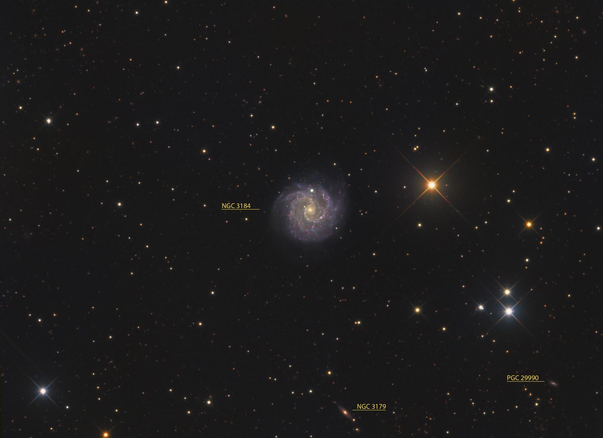 NGC 3184 (Objekte)