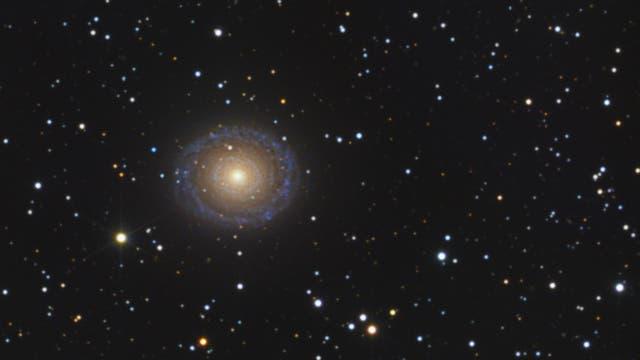 Ringgalaxie NGC 7217