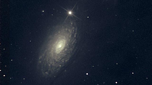 M 63 Sunflower-Galaxie
