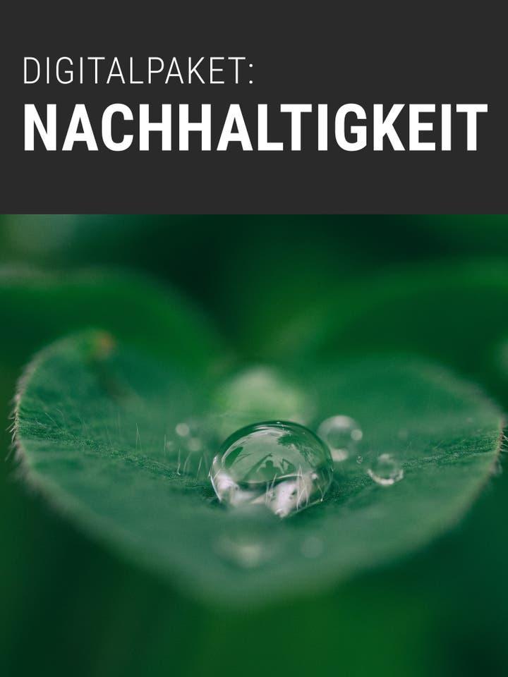 Digitalpaket Nachhaltigkeit Teaser