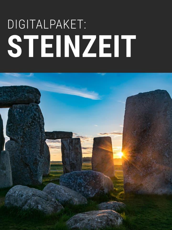 Digitalpaket Steinzeit Teaserbild