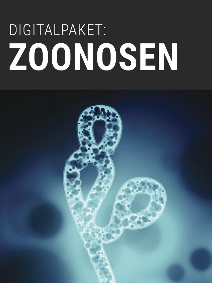 Digitalpaket Zoonosen Teaserbild