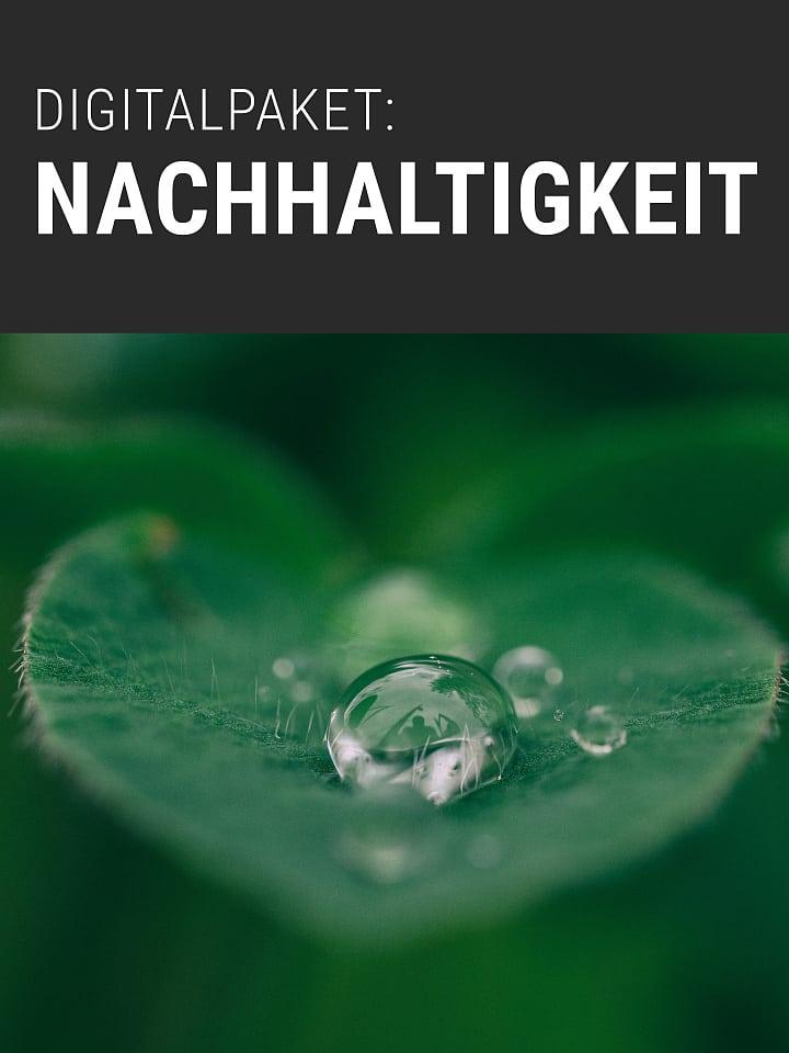 Heftcover Spektrum.de Digitalpaket: Nachhaltigkeit