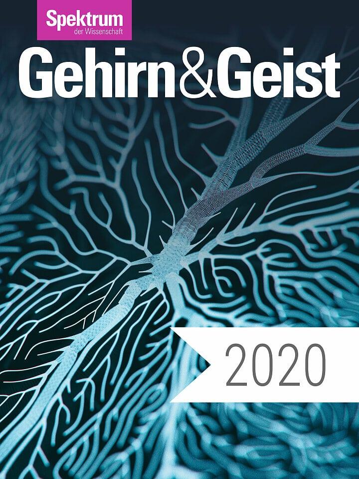 Digitalpaket: Gehirn und Geist Jahrgang 2020
