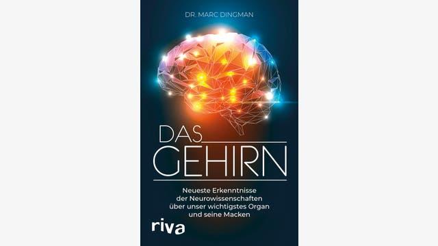 Marc Dingman: Das Gehirn