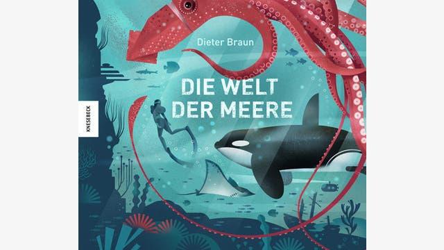 Dieter Braun: Die Welt der Meere