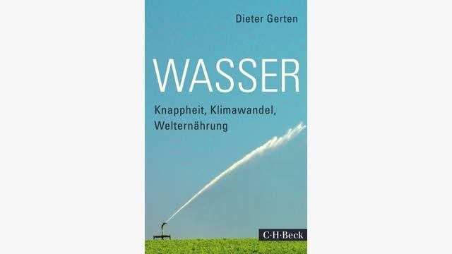 Dieter Gerten: Wasser