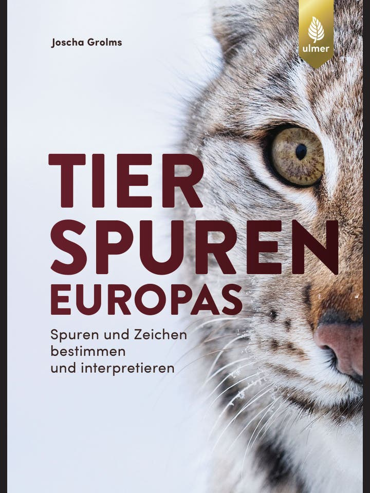 Joscha Grolms: Tierspuren Europas