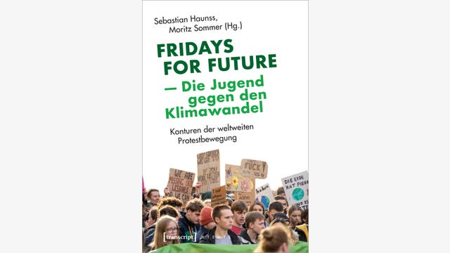 Sebastian Haunss, Moritz Sommer: Fridays for Future