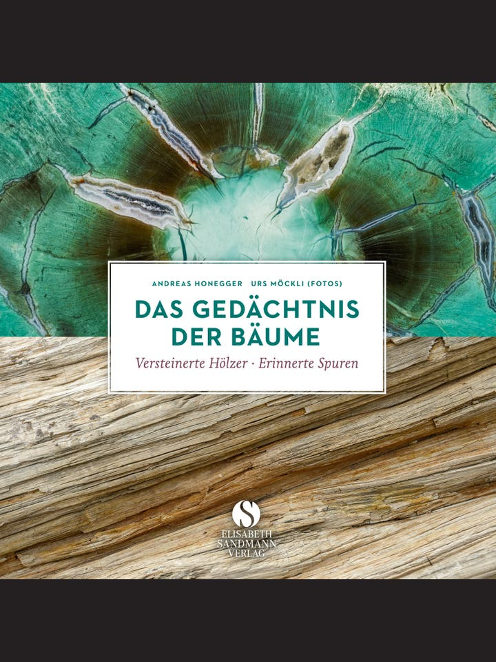 Andreas Honegger, Urs Möckli: Das Gedächtnis der Bäume