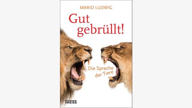 Mario Ludwig: Gut gebrüllt!
