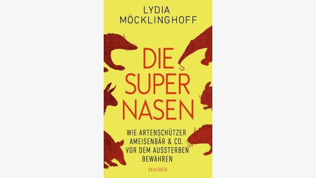 Lydia Möcklinghoff: Die Supernasen