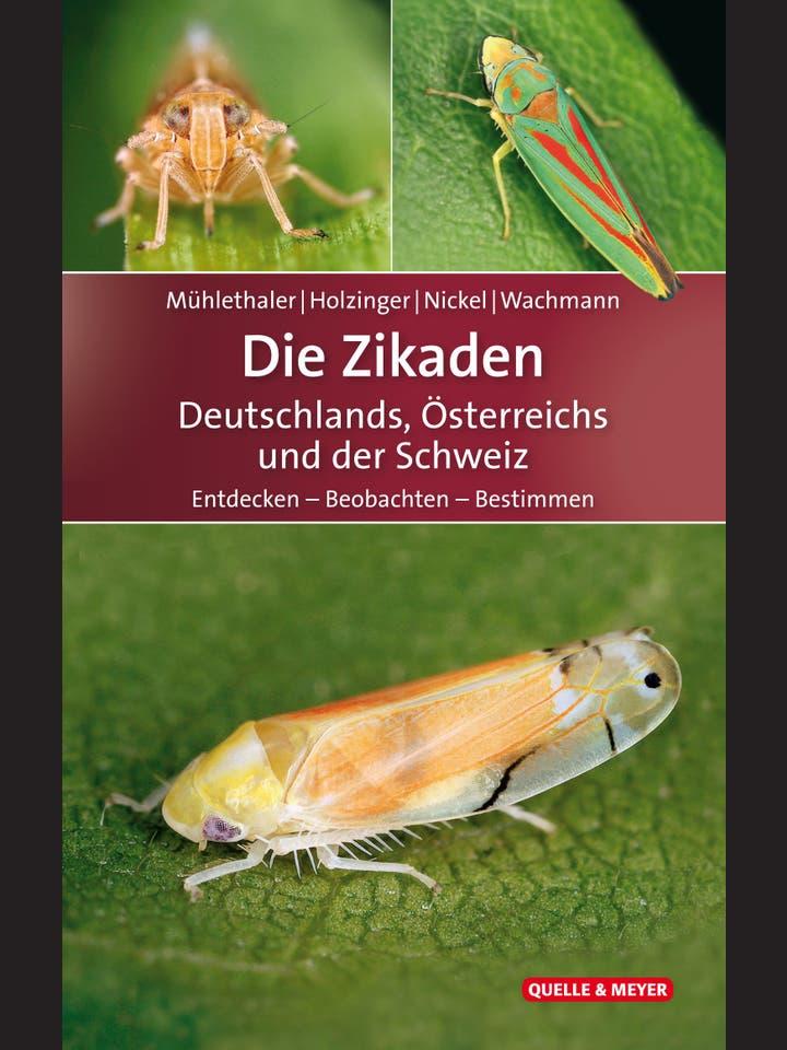 Roland Mühlethaler, Werner E. Holzinger, Herbert Nickel, Ekkehard Wachmann: Die Zikaden Deutschlands, Österreichs und der Schweiz