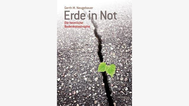 Gerth M. Neugebauer: Erde in Not